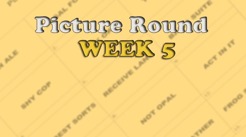 picture round week 5 anagram